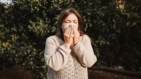 Der Pollenflug bringt eine erhöhte Corona-Gefahr mit sich