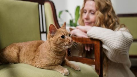 Junge Frau streichelt Katze im Urlaub: Kurz danach sitzt sie im Rollstuhl