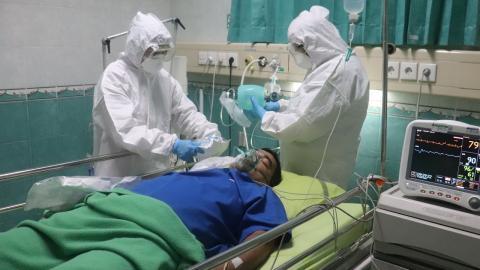 """Nebenwirkung der Corona-Therapie: Tödlicher """"Schwarzer Pilz"""" jetzt auch in anderen Ländern!"""