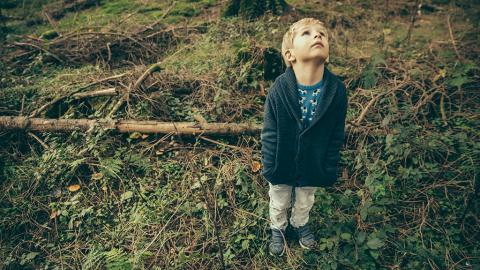 Dreijähriger verschwindet zwei Tage im Wald und kehrt mit unfassbarer Geschichte zurück
