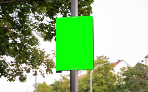 """Aufruf zu Mord oder zum Plakatieren: Mehrdeutigkeit der """"Hängt die Grünen""""-Wahlplakate macht Rechtsprechung kompliziert"""