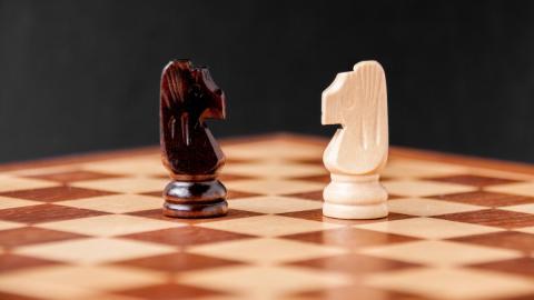 Chessboxing: Ein Sport-Hybrid, der Kopf und Körper fordert