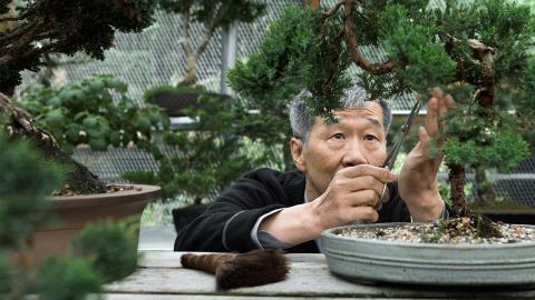 Über 100 Jahre alt: Japanischer Arzt verrät Geheimnis eines langen Lebens