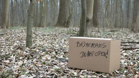 Sie findet einen Karton im Wald: Aber dabei handelt es sich nicht um ein ausgesetztes Tier