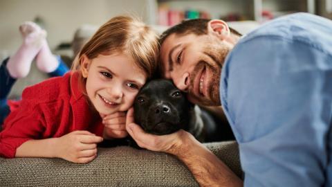 Pitbull darf mit Tochter im Bett schlafen: Was dann passiert, überrascht alle