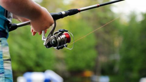 """""""Ich wusste, das gehört nicht hierhin"""": Angler zieht er ganz eigenartige Spezies an Land"""