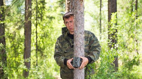 Tierforscher beobachten beängstigendes Verhalten an Waldtieren und schlagen Alarm