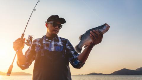 Fischfang: Mann macht grausigen Fund, als er den Fisch zubereiten will