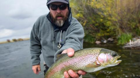 Angler macht eine grausige Entdeckung in seinem frisch gefangenen Fisch