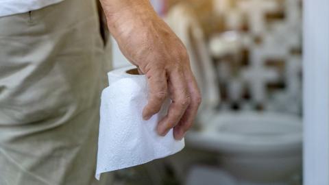 Gefahr auf der Toilette: Mann wird von Schlange in die Genitalien gebissen