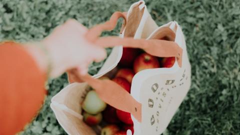 Minimalismus statt Bio: Warum ihr lieber weniger kaufen solltet