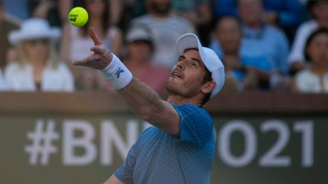 """""""Ich bin ein Idiot"""": Bei Tennis-Star Andy Murray hängt der Haussegen schief"""