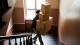 Harte Black-Friday-Woche: Diesem DHL-Paketboten gehen bei der Lieferung die Nerven durch